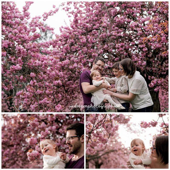 seance-photo-famille-cerisier-japonais